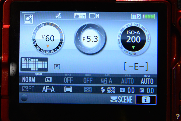 Nikon D5500 screenshot GPS icon